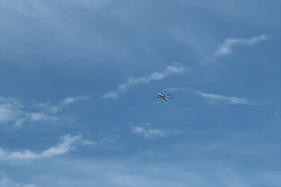 航空機の写真18