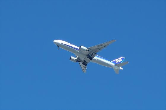 航空機の写真22