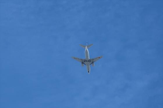 航空機の写真26