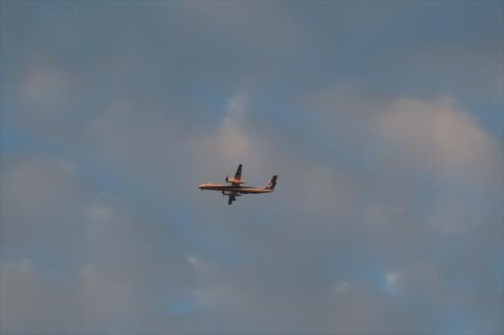 航空機の写真27