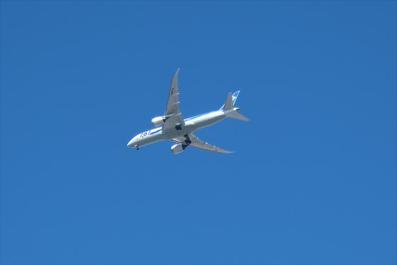 航空機の写真29