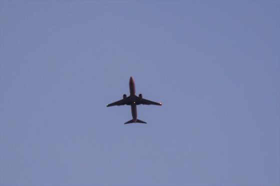 航空機の写真30