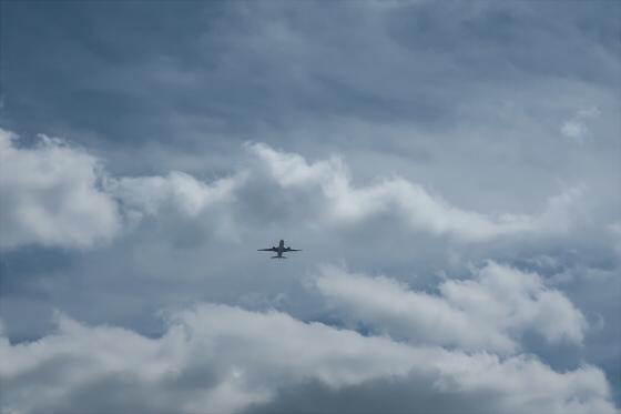 航空機の写真31