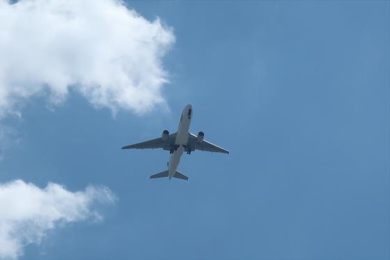 航空機の写真32