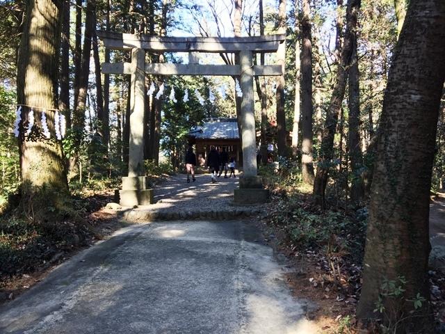 神社は林の中に