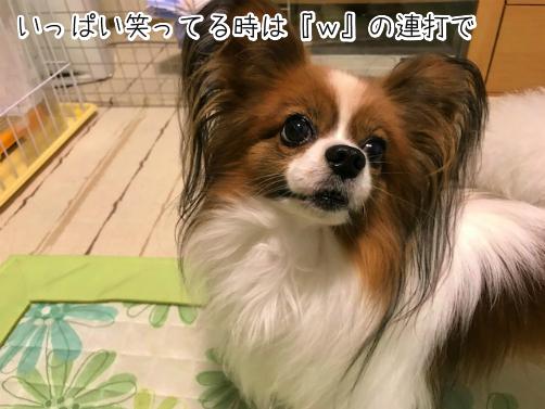 PXnIhPIy草5
