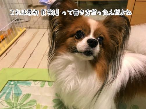 Q9xi38Tx草2
