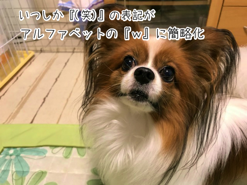 VW8oRny7草4