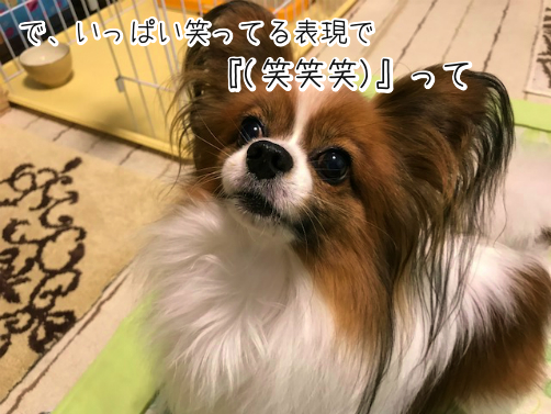 Xvs2Rt9T草3