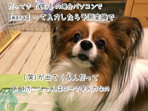 2GTXxfzB草10