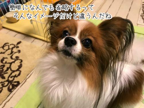 k4cgsTjd草9
