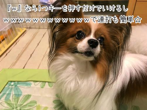 A9tASh3V草11