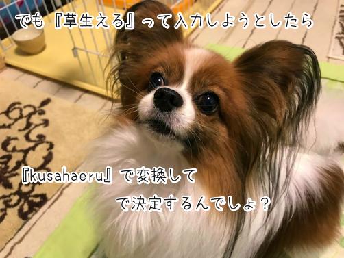 pxP0Wxnr草12