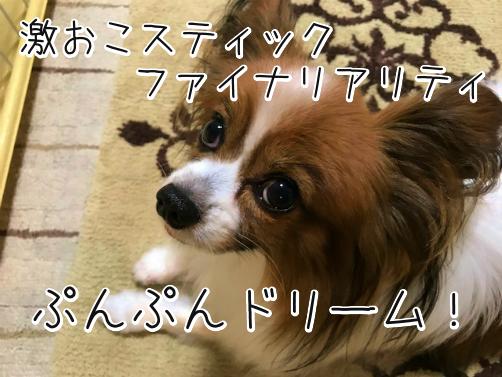 iT4yE8CTわかもの14