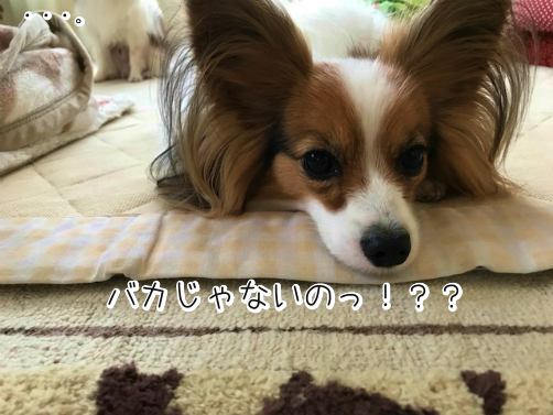 jYwaX5kXじょし4