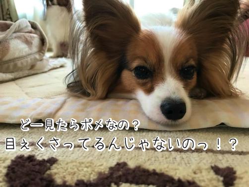 U3gkrHIpじょし5