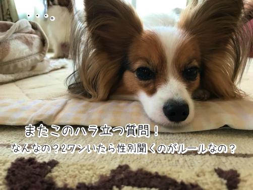 0R9d35xzじょし7