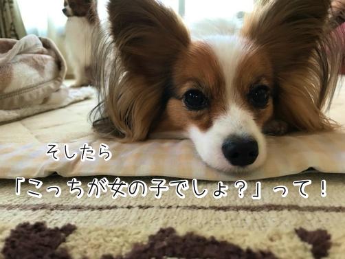 qnWJoDVJじょし9