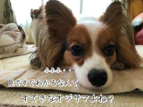 wgf6MUvEじょし10
