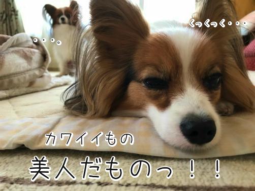 Vn6m5mMSじょし12