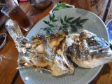 漁火4blog
