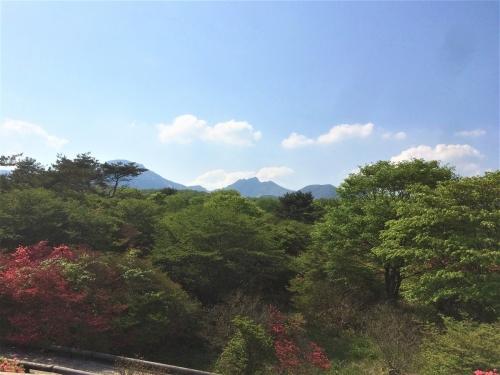 八幡のつつじ群生地と茶臼岳