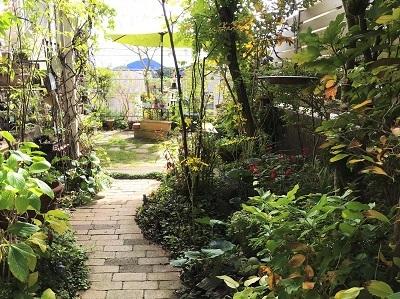 KONOHAの庭10月