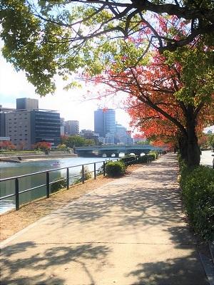 広島市内紅葉 (3)
