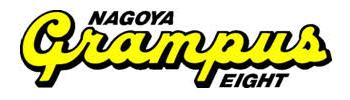 NG8 logo2