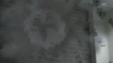 vlcsnap-2017-10-29-14h11m12s236.jpg