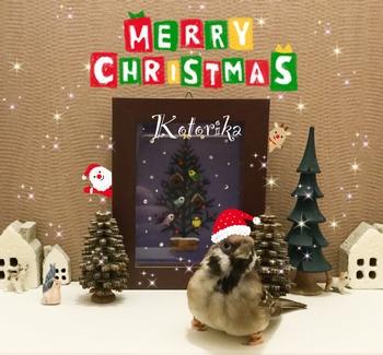 ロコクリスマス