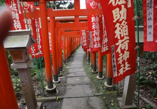 181113-122227-鎌倉プレミアム街歩き20181113 (161)_R