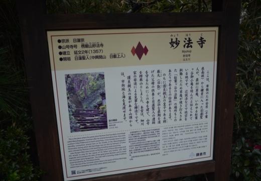 181113-145234-鎌倉プレミアム街歩き20181113 (414)_R