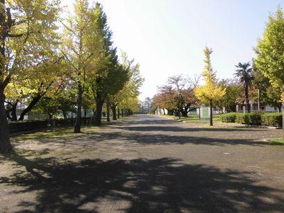 agohuku1026-2.jpg