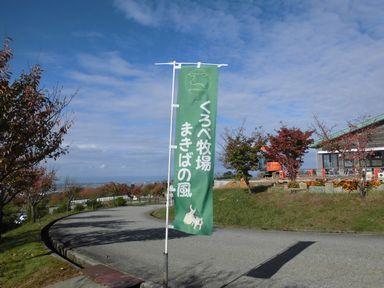 amakiba1031-1.jpg