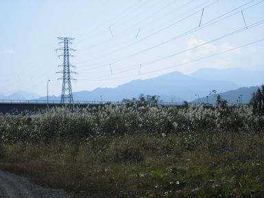 apotakouyou1105-4.jpg