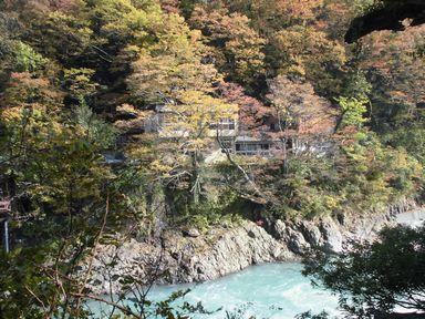 apotakouyou1105-6.jpg