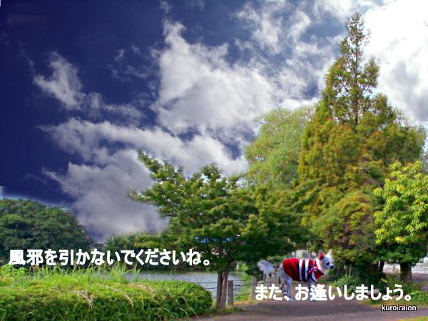 GEDC0223-001.jpg