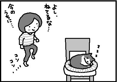 440-1.jpg
