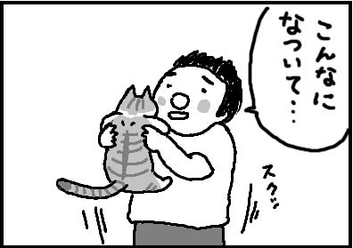 441-2.jpg
