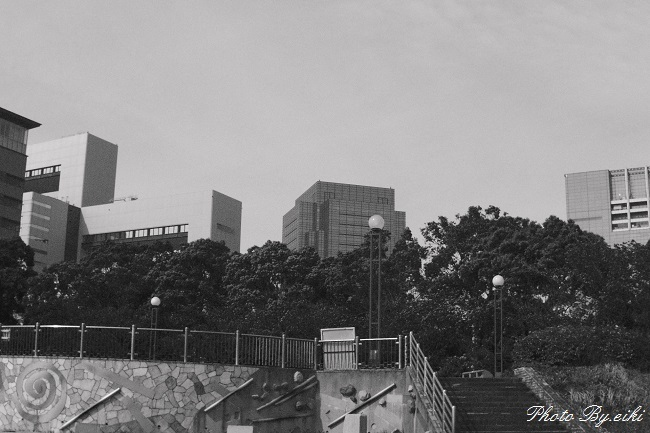 青海南ふ頭公園のもの区rの写真
