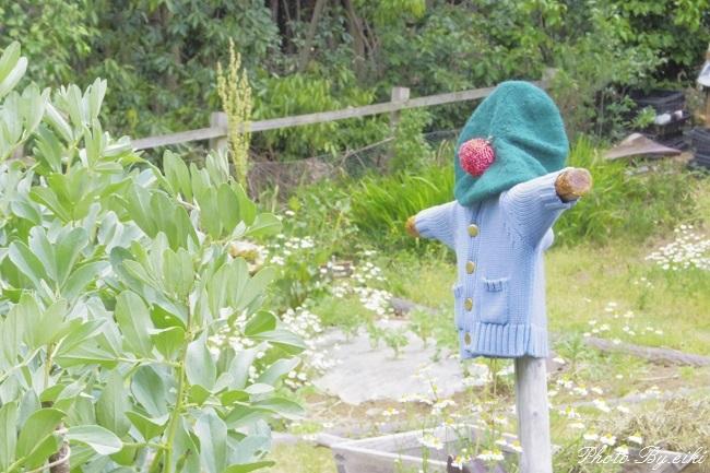 埼玉県こども動物自然公園のビアトリクス・ポター資料館の写真