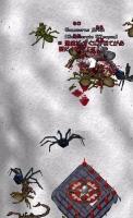 1001蜘蛛2