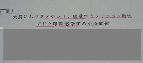 2017年12月5日耐性病原菌①-1