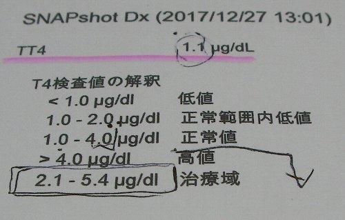 20171227血液検査T4①