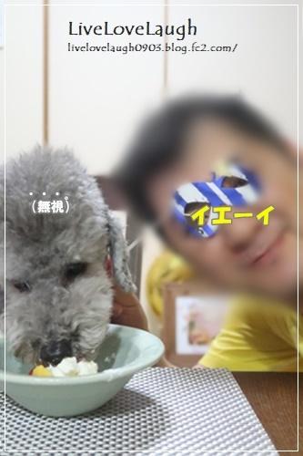 IMG_9471キチドク