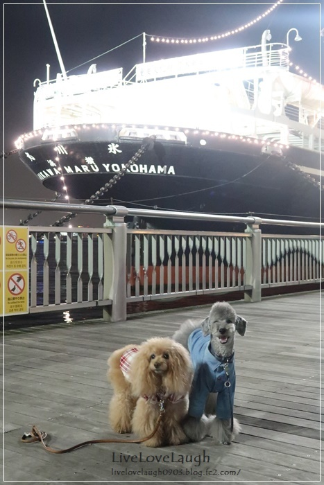 IMG_0339横浜会