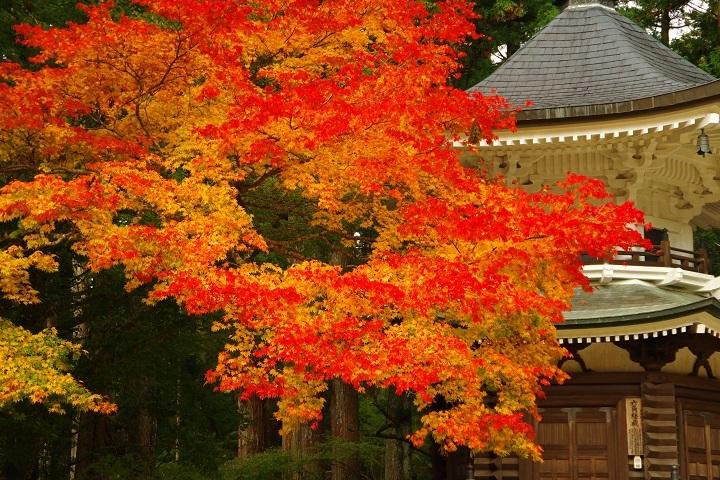 2018年10月30日 高野山紅葉ツーリング (4)