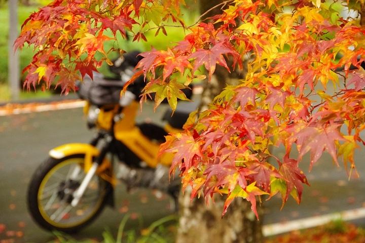 2018年10月30日 高野山紅葉ツーリング (3)