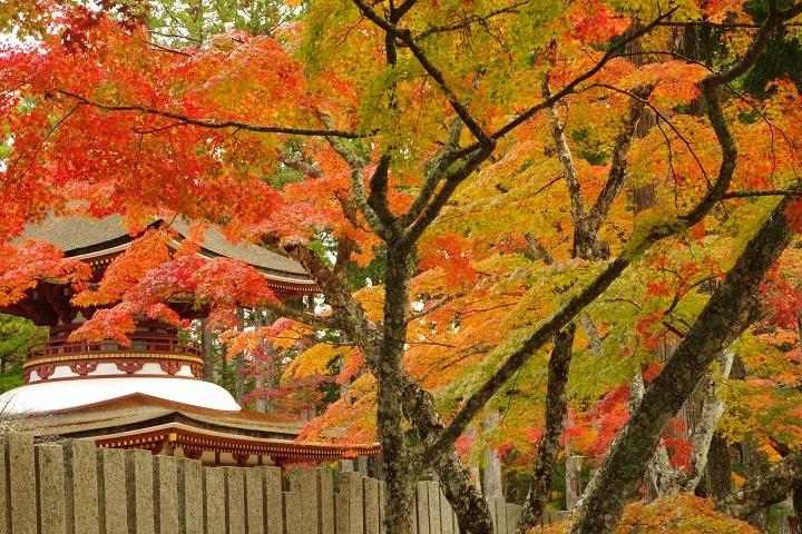 2018年10月30日 高野山紅葉ツーリング (9)